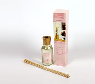 Reed Diffuser Set For Continuous Fragrance Diffusion (LT - 200/ A)